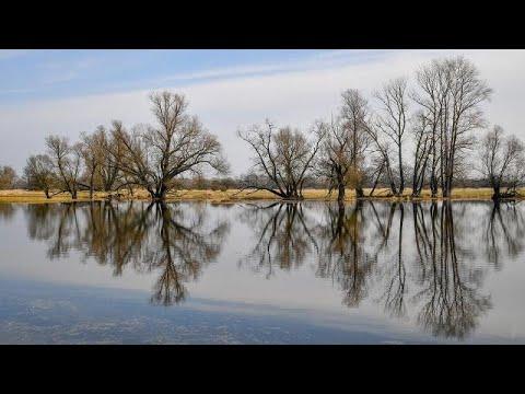 ท่องโลกกว้าง ตอน  แม่น้ำโอเดอร์